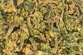 Broccoliröschen 100g